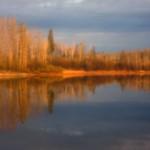 The Lake in Spring, 2010
