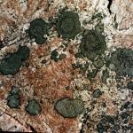 Superior Rocks 1